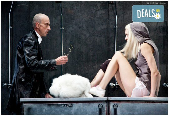 Гледайте комедията Килър Джо с Малин Кръстев на 13-ти март (сряда) в Малък градски театър Зад канала! - Снимка 3