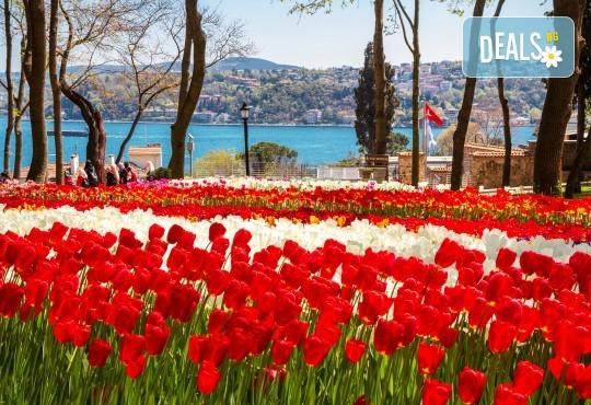 Екскурзия през април до Истанбул за Фестивала на лалето! 3 нощувки със закуски, транспорт и бонус: посещение на Одрин! - Снимка 1