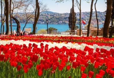 Екскурзия през април до Истанбул за Фестивала на лалето! 3 нощувки със закуски, транспорт и бонус: посещение на Одрин!