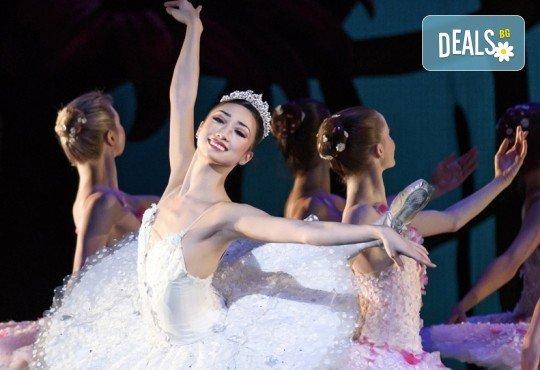 """Кино Арена представя впечатляващ балет от сцената на Ковънт Гардън ! """"Дон Кихот"""", спектакъл на Карлос Акоста, гледайте на 3, 6 и 7 април в кината в София! - Снимка 2"""