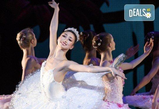 """Кино Арена представя блестящ балет от сцената на Ковънт Гардън ! """"Дон Кихот"""", спектакъл на Карлос Акоста, гледайте на 3, 6 и 7 април в кината в страната - Снимка 2"""