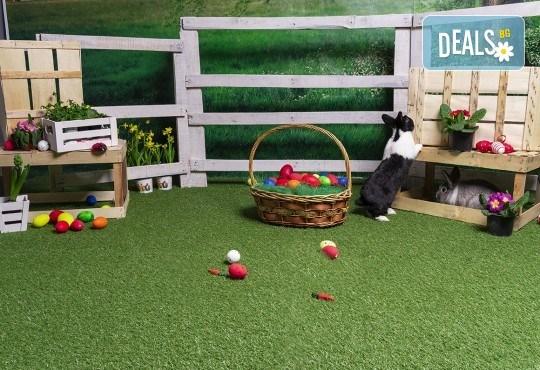 Детска, семейна или индивидуална Великденска фотосесия в студио с тематични декори, обработка на всички кадри и подарък: една разпечана снимка от D2T Photo&Art Studio! - Снимка 1