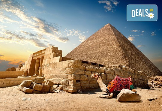 Екзотична почивка в Египет през пролетта! 6 нощувки на база All Inclusive в Lemon & Soul Garden Makadi 4* и 1 нощувка на база НВ в Кайро, самолетен билет и трансфери, водач от Онекс Тур! - Снимка 3