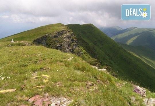 Уикенд приключение в Сърбия през май! 2 нощувки с 1 закуска и 1 вечеря, транспорт, планински водач и посещение на Ниш, Нишка баня, Миджур и Бабин зъб! - Снимка 3