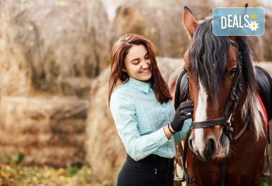 """45-минутна конна езда в конна база """"София Юг"""", кв. Драгалевци"""