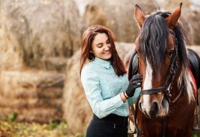 """Разходка сред природата! 45-минутен урок по конна езда в конна база """"София – Юг"""", Драгалевци! - Снимка"""