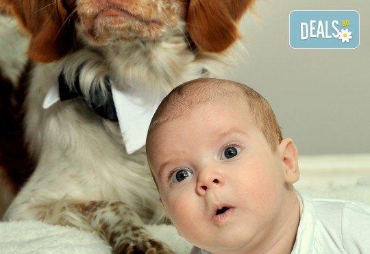 Красиви мигове! Студийна фотосесия за дете или цялото семейство и подарък: фотокнига от Photosesia.com! - Снимка 3