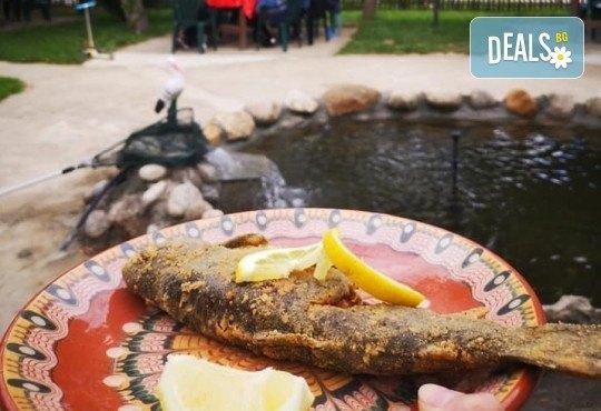 Почивка в Добринище! 1 нощувка със закуска и вечеря в къща за гости Андрееви, отстъпка за ползване на минерален басейн! - Снимка 25