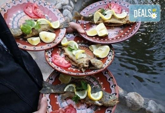 Почивка в Добринище! 1 нощувка със закуска и вечеря в къща за гости Андрееви, отстъпка за ползване на минерален басейн! - Снимка 29