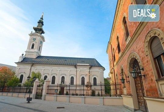 Бирен фест през август в Белград, Сърбия! 2 нощувки със закуски, транспорт, посещение на крепостта Калемегдан и църквата Св. Сава! - Снимка 7