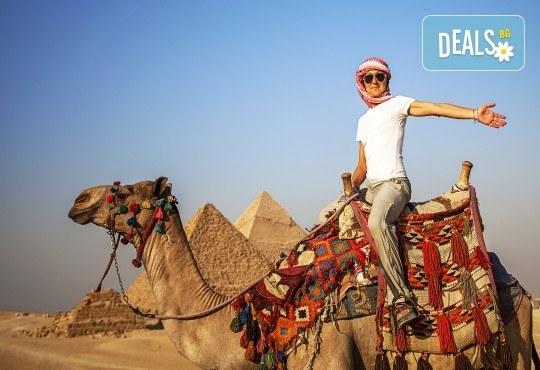 Почивка през октомври в Египет! 6 нощувки в Lemon & Soul Garden Makadi 4* на база All Inclusive в Хургада и 1 нощувка със закуска в Barcelo Cairo Pyramids 4* в Кайро, самолетен билет и водач - Снимка 3