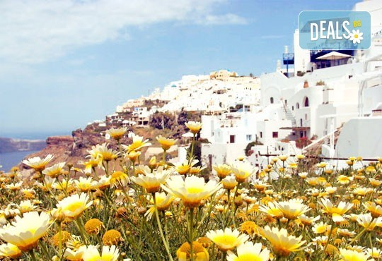 Екскурзия през септември или октомври до остров Санторини! 4 нощувки със закуски, транспорт, фериботни и пътни такси и представител на Далла Турс! - Снимка 4