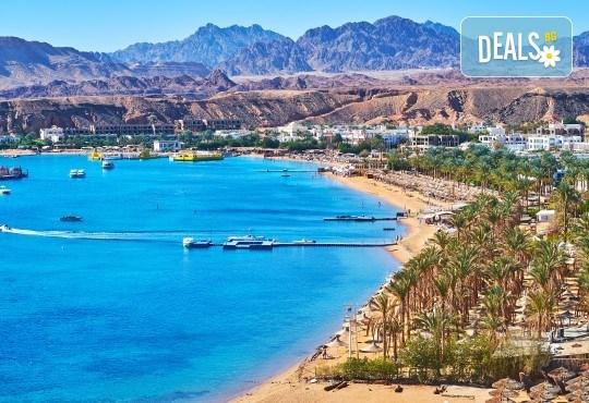 Почивка през септември и октомври в Шарм Ел Шейх, Египет, с Караджъ Турс! 7 нощувки на база All inclusive в Sharm Cliff Resort 4*, самолетен билет и багаж, трансфери - Снимка 7