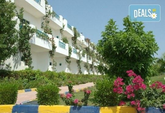 Почивка през септември и октомври в Шарм Ел Шейх, Египет, с Караджъ Турс! 7 нощувки на база All inclusive в Sharm Cliff Resort 4*, самолетен билет и багаж, трансфери - Снимка 6