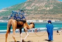 Самолетна екскурзия до Мароко през октомври с Караджъ Турс! Билет, летищни такси, трансфери, 7 нощувки със закуски и вечери в хотели 4*, водач и програма - Снимка
