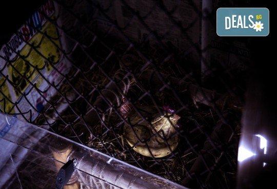 """Детски рожден ден за до 20 деца, с Escape игри на живо! """"Пощенска станция"""" или """"Направление неизвестно"""", стая за почерпка, много забавления и незабравими спомени от Emergency Escape! - Снимка 4"""