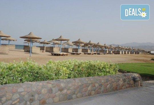 Почивка в Imperial Shams Abu Soma 5*, Хургада, Египет! 7 нощувки на база All Inclusive, самолетен билет с летищни такси, трансфери - Снимка 7