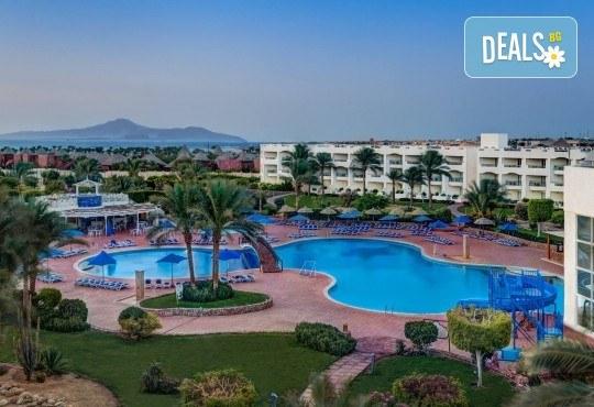 Почивка през есента в Aurora Oriental Resort 5*, Шарм ел Шейх, Египет! 7 нощувки на база All Inclusive, самолетен билет, летищни такси и трансфери - Снимка 5