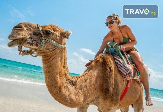 Last minute! Екзотична почивка през септември в Тунис! 7 нощувки на база All Inclusive в хотел 4*, самолетен билет, летищни такси и трансфери - Снимка 1