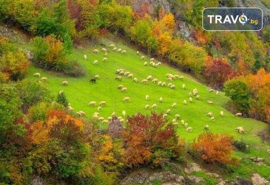 Екскурзия през октомври до Пампорово, Ягодинската пещера и Дяволското гърло! 1 нощувка със закуска и вечеря, транспорт и екскурзовод - Снимка 4