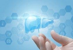 Пакет изследвания на чернодробната функция: ПКК, АСАТ, АЛАТ, ГГТ, общ и директен билирубин, ПТТ, фибриноген и общ белтък в СМДЛ Надежда 1! - Снимка