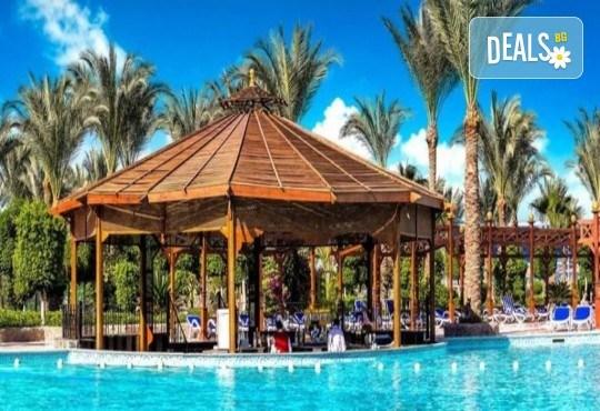 Почивка в Египет през есента! 7 нощувки на база All Inclusive в хотел Hawaii Le Jardain Aqua Park 5* в Хургада, самолетен билет с директен чартърен полет и трансфери - Снимка 6