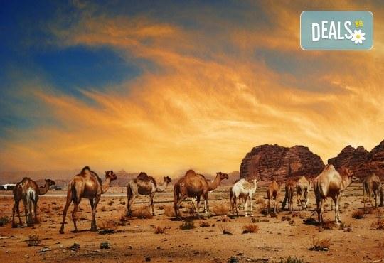 Екзотична есенна екскурзия до Йордания! 4 нощувки със закуски в хотел 4*, самолетен билет и трансфери, входна виза - Снимка 11