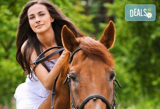 45 минути разходка с кон от конна база София Юг, кв. Драгалевци