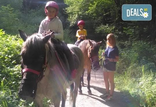 Рожден ден в конна база София - Юг - 3 часа детско парти за до 10 деца с конна езда, стрелба с лък, батут, тролей, викторини, забавни игри и много други забавления! - Снимка 4