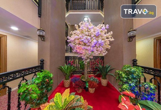 Посрещнете Нова година в Истанбул с Дениз Травел! 3 нощувки със закуски в The Vison Deluxe Hotel Istanbul 4*, транспорт и бонуси: посещение на мол Forum и Одрин - Снимка 13