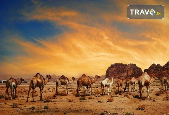 Ранни записвания за екскурзия през 2020г. до Йордания! 4 нощувки със закуски, самолетен билет и входна виза - Снимка 11