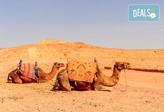 Екзотика през 2020г. в Дубай! 4 нощувки със закуски и вечери, самолетен билет, трансфери, посещение на Абу Даби и сафари в пустинята - Снимка 10