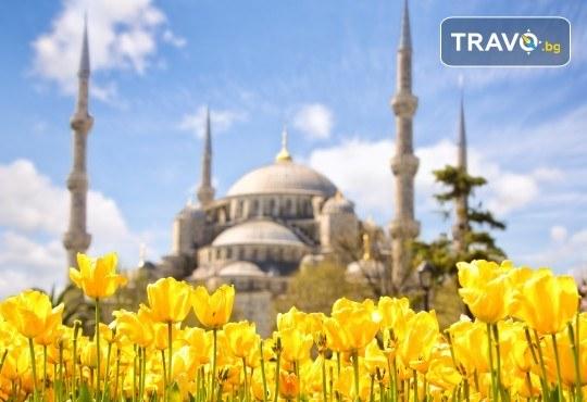 Екскурзия до Истанбул за Фестивала на лалето с 2 нощувки и закуски, транспорт и трансфер до Емирган парк! - Снимка 1