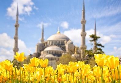 Екскурзия до Истанбул за Фестивала на лалето с 2 нощувки и закуски, транспорт и трансфер до Емирган парк! - Снимка