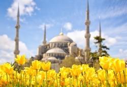 Ранни записвания само до 29.11.! Екскурзия до Истанбул за Фестивала на лалето с 2 нощувки и закуски, транспорт и трансфер до Емирган парк! - Снимка