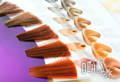 Нов цвят и прическа! Боядисване с боя на клиента, подхранваща терапия с италианската серия Vitality's или терапия с кератин и прическа със сешоар за 9.50 лв. в Студио за красота New Vision! - Снимка 4