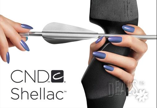 Маникюр с гел лак на CND SHELLAC или неонов и светещ в тъмното флуоресцентен гел лак BLUESKY + 4 декорации или камъчета само за 14.50лв вместо 35лв от Салон за красота Косабелла в Пловдив!