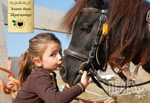 Вълнуващо забавление за деца! Един час конна езда и разходка с водач или урок с инструктор в конна база Драгалевци на цени от 14.90лв. на човек!