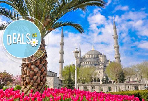Последни места за 23.04, Истанбул - Фестивала на лалето, със Запрянов Травел! 4 дни, 2 нощувки, закуски, 2/3*, на човек