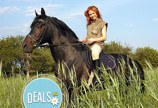 Усетете свободата! 30-минутно обучение с инструктор по конна езда от Конна база Ласкар, до с.Чепинци!