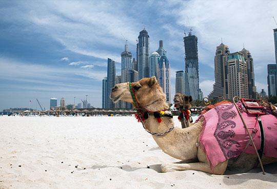 Екскурзия до Дубай през юли и септември, с Лале тур! 3 нощувки със закуски в хотел Grandeur 3*, самолетен билет, летищни такси и трансфери!