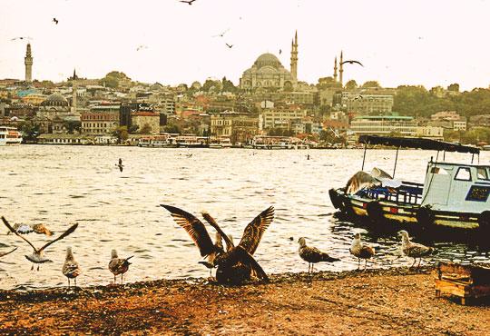 През ноември до Истанбул с включени транспорт, екскурзовод и пътни такси от агенция Поход! Нощен преход!