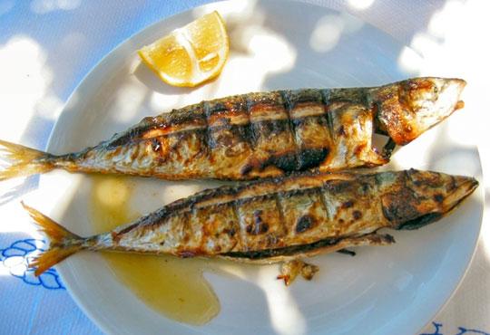 Неустоимо вкусно предложение! Вземете основно ястие и салата по избор в ресторант MFusion, Варна!