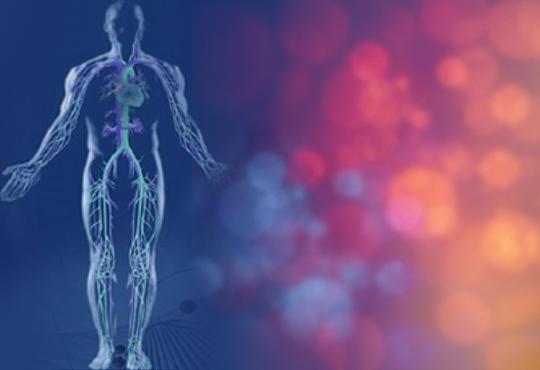 Грижа за Вашето здраве! Биоскенер - изследване на 220 здравни показателя на организма, плюс консултация от Айвис Студио!