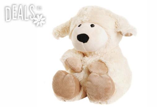 Плюшена нагряваща се овчица Лавенди 26.92лв вместо 38.99лв - Снимка 1