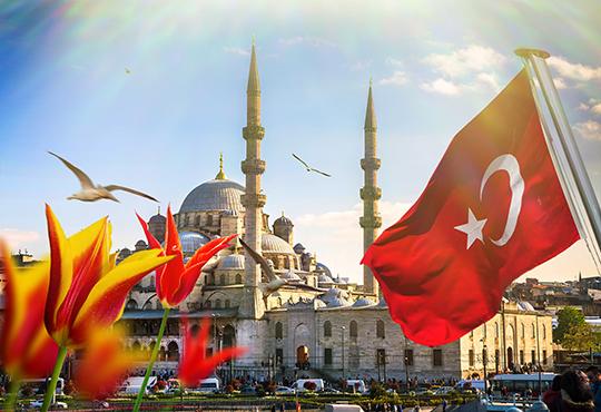 Ранни записвания за Фестивала на лалето в Истанбул! 3 нощувки със закуски, транспорт, посещение на парка Емирган, посещение на Чорлу и Одрин! - Снимка